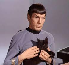 Image result for mr. spock