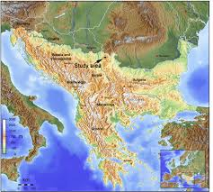 POLLEN MORPHOLOGY OF THE BALKAN-CARPATHIAN ...