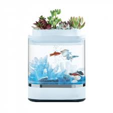 <b>Аквариум Xiaomi</b> Geometry Mini <b>Lazy</b> Fish Tank USB (HF-JHYG005 ...