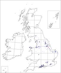 Gentiana pneumonanthe | Online Atlas of the British and Irish Flora