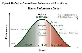 Image result for yerkes dodson law
