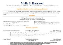 sample resume teacher of english essay about describing love  resume sample of english teacher