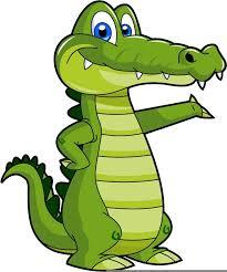Image result for gator images