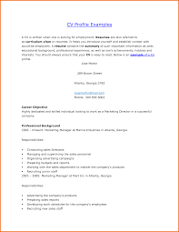 resume profile examples executive resume template professional profile resume examples