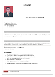 resume for mis executive