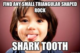 Find any small triangular shaped rock Shark tooth - Misc - quickmeme via Relatably.com