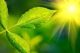 Risultati immagini per luce sole