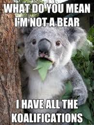 Memes Vault Sexy Teddy Bear Memes via Relatably.com