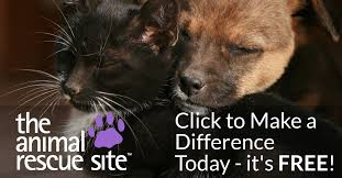 The <b>Animal</b> Rescue Site   Click to Feed Rescue <b>Animals</b>