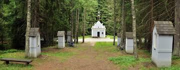 Výsledek obrázku pro Kaple sv. Anny v Borových Ladách