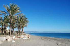 Jueves de Pedalea por Málaga en el Bkool Images?q=tbn:ANd9GcQbyxXpefc7xYF_W-ti6R6RnrzWFAIXHjngu--H0dZNJKyEkJzzSw