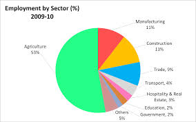 economy of sectors