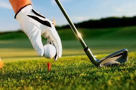 Risultati immagini per immagine golf