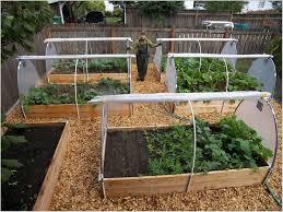 Small Picture The 25 best Garden layouts ideas on Pinterest Vegetable garden