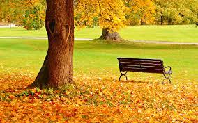 Картинки по запросу autumn