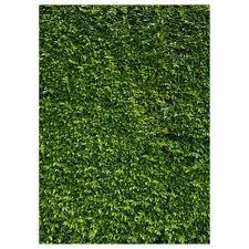 Online Shop 5x7ft(150x210cm) Nature <b>Green</b> Grass Backdrops ...