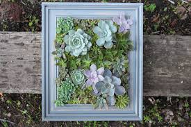 wall planter designs ideas diy a framed succulent wall planter