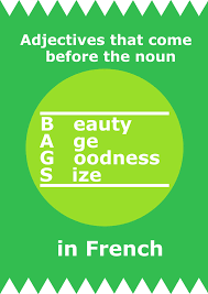 writing essays in french cheat sheet from jam useful expressions bags adjectives that come before the noun in french