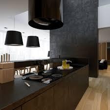 white black kitchens rustic dazzling design ideas of white black modern kitchen with black kitchen