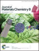 Highly <b>flexible silica</b>/chitosan hybrid scaffolds with oriented pores for ...