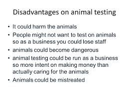 good thesis statement against animal testing   thesis advantages and disadvantages of animal testing essay image
