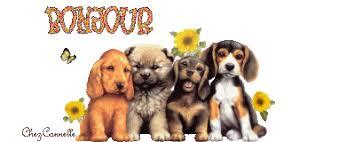 """Résultat de recherche d'images pour """"gif Moi et un chien"""""""