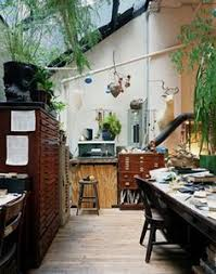 dream home indoor plants amazing office plants