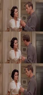 cat on a hot tin roof essaycat on a hot tin roof essay   psychology assignments elizabeth taylor cat on hot tin