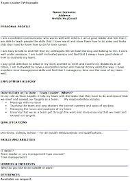 Team Leader CV Example   icover org uk icover org uk