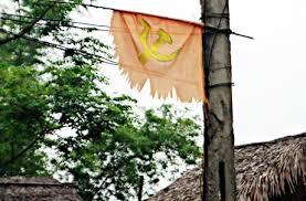 Image result for dân treo cờ đảng