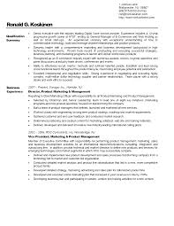 professional business resume getessay biz professional business resume example throughout professional business