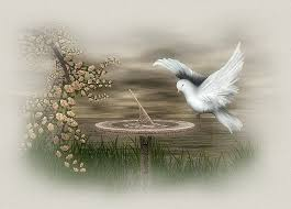 Resultado de imagem para mundo de paz maravilhoso