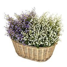 Resultado de imagen de cesto de flores