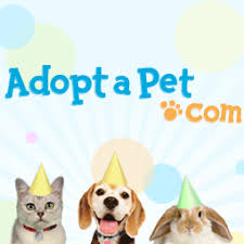Adopt a <b>dog</b> or <b>cat</b> today! Search for local pets in need of a home.
