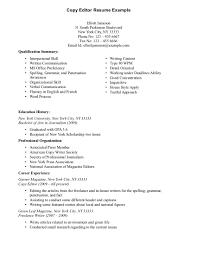 sample career aspirations sample resume format sample copy of resume