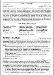 it executive resume sample sample resume executive