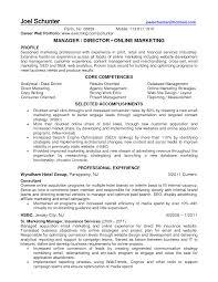 online marketing profile resume cipanewsletter cover letter sample retail marketing resume sample retail