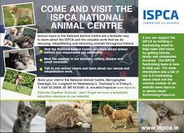 irish spca animal charity rescue dogs cats the believes that education is key to better animal welfare in the national animal centre to learn more about animal welfare
