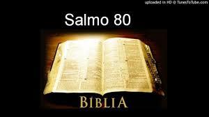 Resultado de imagem para salmo 80