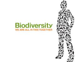 Резултат слика за Међународни дан  биодиверзитета