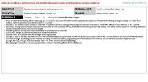 marketing director resumechannel marketing director resume