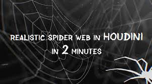 Create a Realistic <b>Spider Web</b> With Houdini in 2 Minutes - Lesterbanks