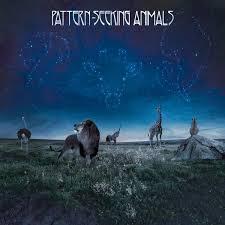 <b>Pattern</b>-<b>Seeking Animals</b> – No Burden Left to Carry Lyrics | Genius ...