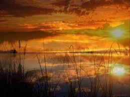 Texas - <b>Summer Sun</b> - YouTube