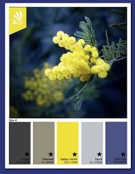 Pin by Beth Francis on salon color ideas   Color palette <b>yellow</b>, <b>Blue</b> ...