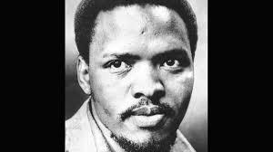 <b>Palme</b>, Biko och kampen mot apartheid | SVT Play
