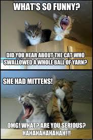 Corny Pun Kittens memes | quickmeme via Relatably.com