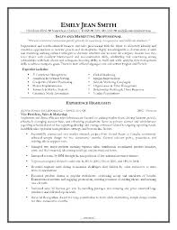 example resume for marketing position cipanewsletter cover letter sample resume of s executive sample resume of