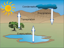 the water cycle   usaus h othe water cycle a diagram of the water cycle  water  water  water