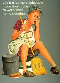 The Funny Side of Cleaning on Pinterest | Cleaning, Dublin and Meme via Relatably.com